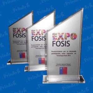 Trofeo Acrilico Exposicion